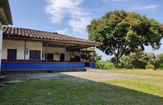 Finca de Producción agrícola Betulia Morelia Pereira